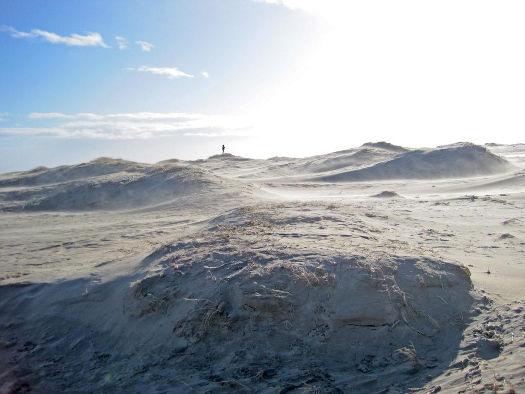 Dünen im Ostland