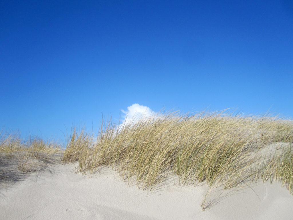 Dünen und blauer Himmel auf Juist