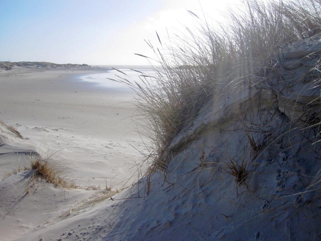 Norderney - Strandblick aus den Dünen