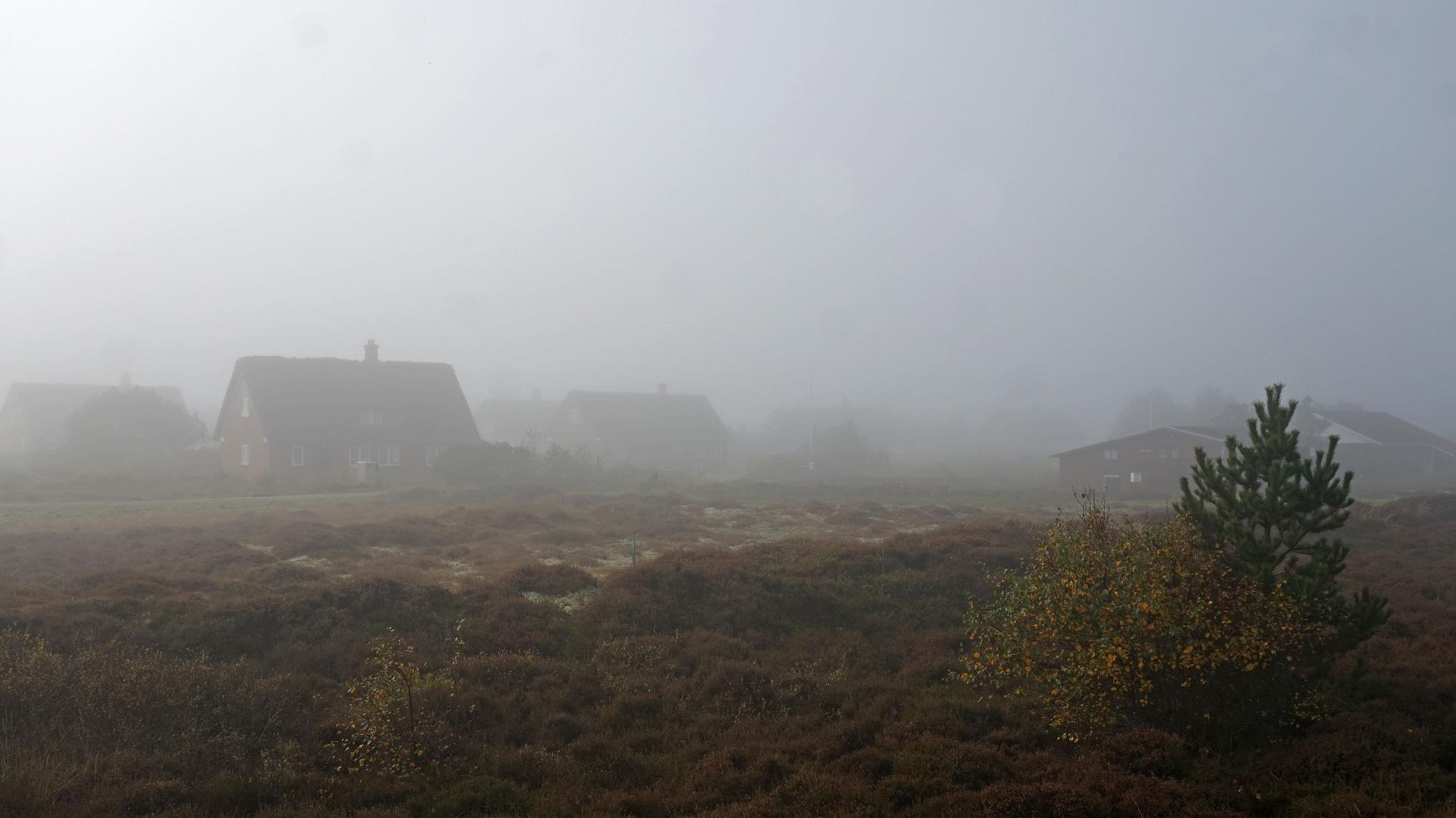 Morgennebel steht zwischen den Ferienhäusern von Sønderho auf Fanø.