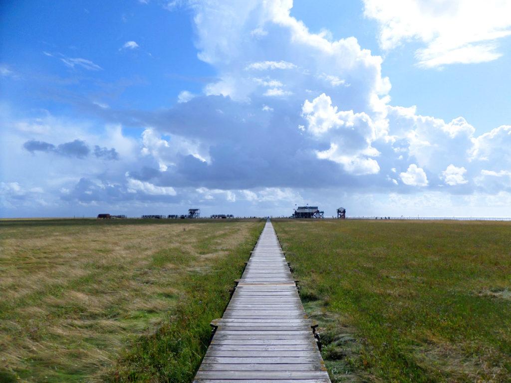 Ein Bohlenweg quert die Salzwiese vor dem Deich in Sankt Peter Ording