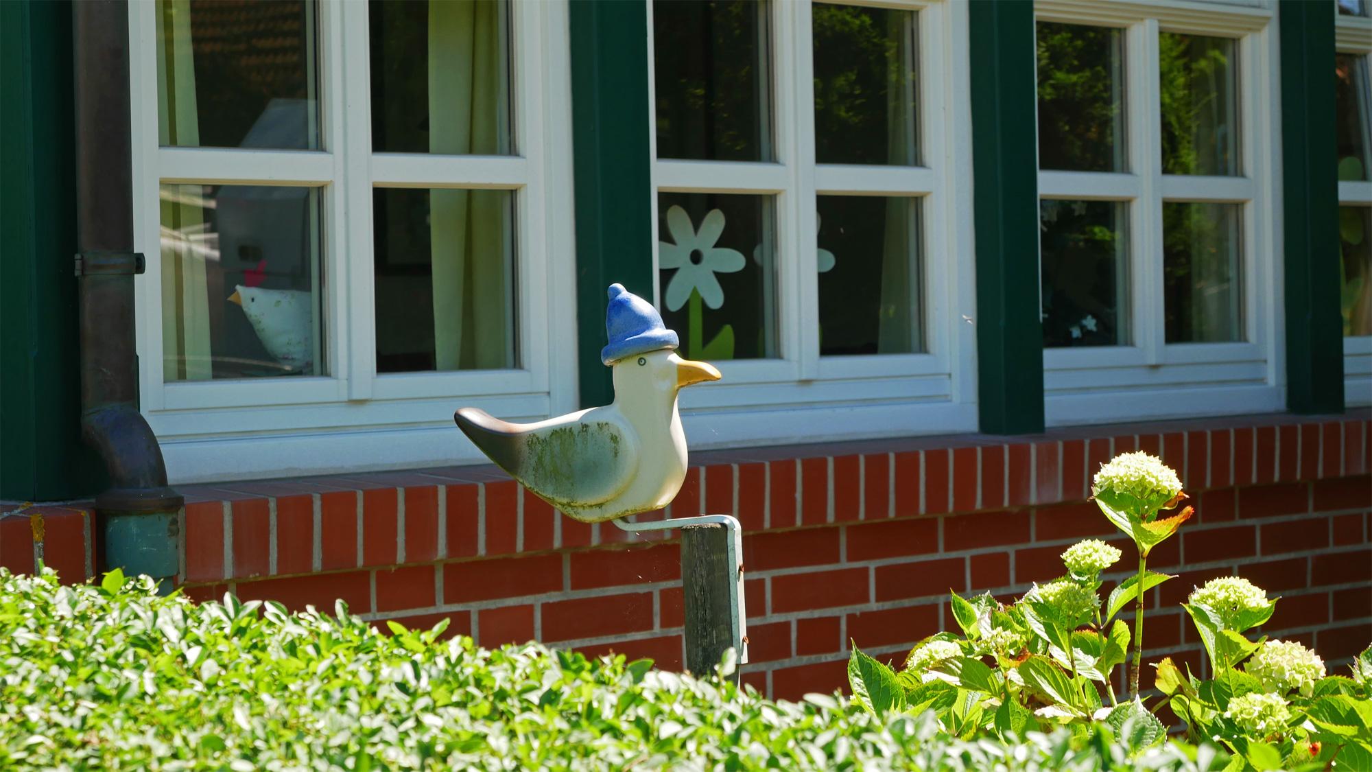 Möwe im Vorgarten auf Spiekeroog